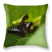 Natures Window Throw Pillow