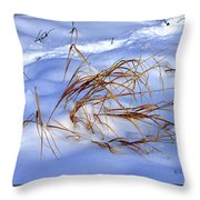 Nature's Winter Abstract #3 Throw Pillow