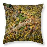 Nc Fall Foliage 0543 Throw Pillow