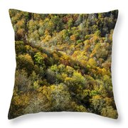 Nc Fall Foliage 0545 Throw Pillow