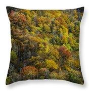 Nc Fall Foliage 0559 Throw Pillow