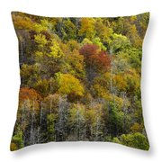 Nc Fall Foliage 0561 Throw Pillow