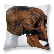 Neanderthal Skull Throw Pillow