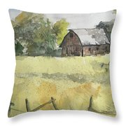 Near Cedar Falls, Ia Throw Pillow