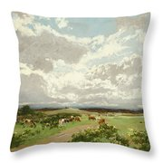 Near Liverpool. New South Wales Throw Pillow