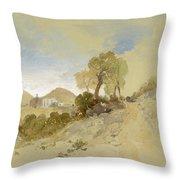 Near San Francisco, Mexico, March 1, 1883 Throw Pillow