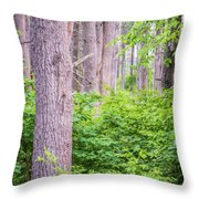 Near The Clearing Throw Pillow