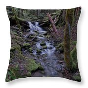 Near The End Of A Journey  Throw Pillow