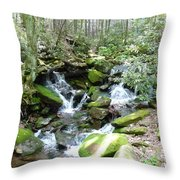 Near The Grotto Throw Pillow