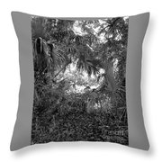 Near The Hillsborough Throw Pillow
