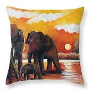 Near The Sigiriya Throw Pillow