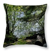 Near Water Of The Forest Lake. Throw Pillow