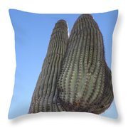 Wickenburg Saguaro  Throw Pillow
