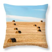 Nearly Covered Throw Pillow
