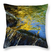 Nearly Swept Away Throw Pillow