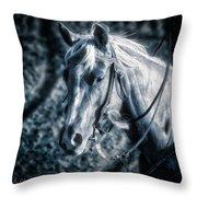 Nebraska Rodeo Roping Horse... Throw Pillow