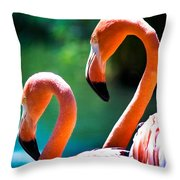 Neck And Neck Throw Pillow