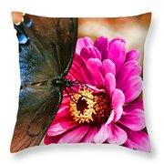 Nectar Feast Throw Pillow