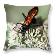 Nectar Lover Throw Pillow
