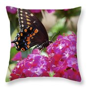 Nectar Of Pink Passion Throw Pillow