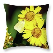 Nectar Seeker Throw Pillow