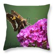 Nectaring Moth Throw Pillow