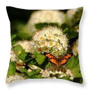 Nectaring Pearl Crescents Throw Pillow