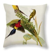 Nectarinia Gouldae Throw Pillow by John Gould