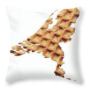 Nederland Stroopwafelland Throw Pillow