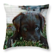 Need A Little Mayhem? Throw Pillow