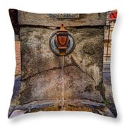 Need Some Water Throw Pillow
