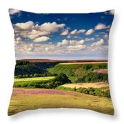 Needle Point From Saltersgate Throw Pillow