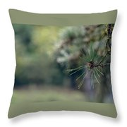 The Needles Throw Pillow
