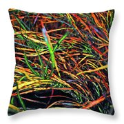 Needles Of Color Throw Pillow