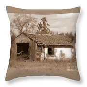 Needs Paint - Soft Focus Throw Pillow