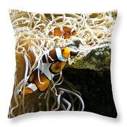 Nemo And Marlin Throw Pillow