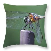 Neon Dragonfly Throw Pillow
