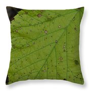 Neon Greens Throw Pillow