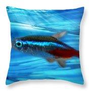 Neon Tetra Throw Pillow
