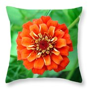 Nepal Orange 2 Throw Pillow