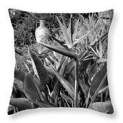 Nepenthe Bird Of Paradise B And W Throw Pillow