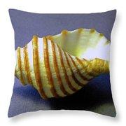 Neptune Whelk Seashell Throw Pillow
