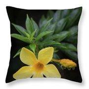 Nerium Oleander In The Rain Throw Pillow