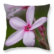 Nerium Oleander, Sri Lanka Throw Pillow