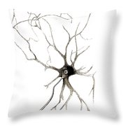 Nerve Cell From Spinal Cord, Deiters Throw Pillow