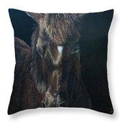 Nervous Colt  Milltown Fair Throw Pillow