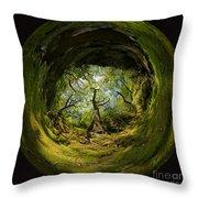 Ness Glen Throw Pillow