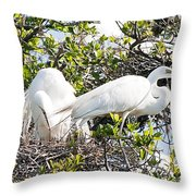 Nest Building Throw Pillow