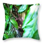 Nest In Plain Sight Throw Pillow