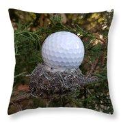 Nest Perspective Throw Pillow